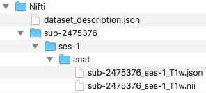 Script_anat organized