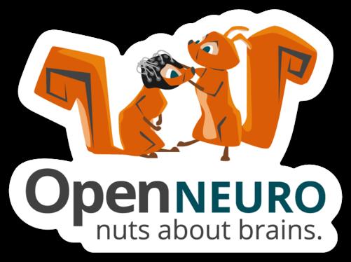 EEG_OpenNeuro